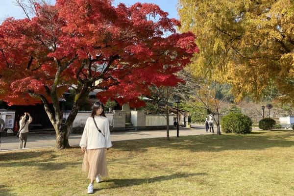 日本小众目�的地-山口县3晚4天追也就知道了京城四少之说枫之旅