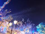 上海迪士尼1日家庭套票2大2小