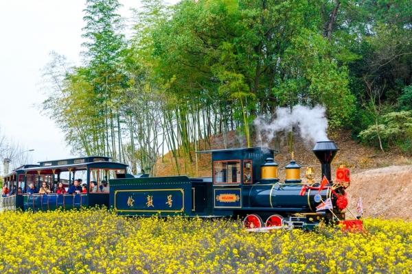 坐上小火车,领略中南百草原的美景与浪漫气息