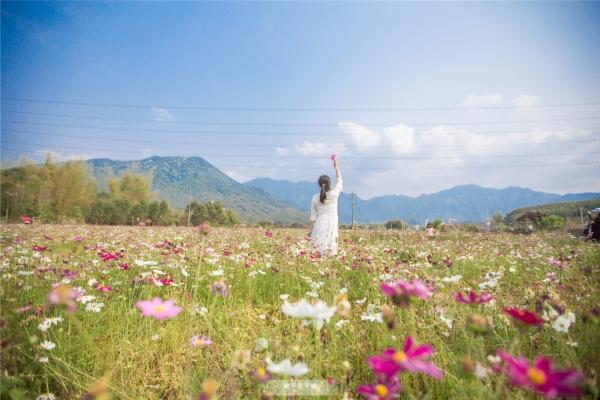惠州白盆珠,温泉、水库、草原、茶园、溪流并存,亲子游正合适