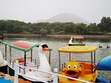 汤山紫清湖旅游区森林温泉