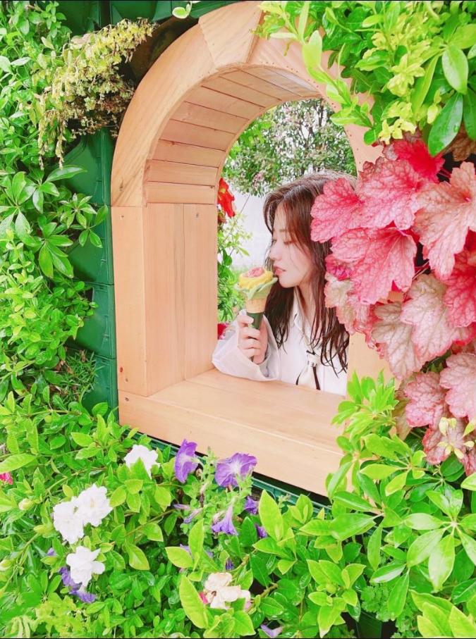 上海花博会|花开的刚刚好,沉浸在梦幻仙境,花仙子非你莫属!
