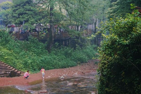 寻竹海仙山、探萤火虫奇妙夜,成都出发两小时的邛崃藏着不可思议的夏天