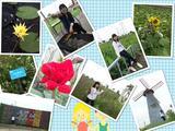上海寻梦园香草农场