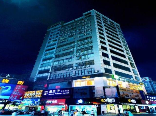 黑王子艺术酒店(泸州水井沟店)