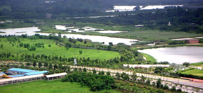香港湿地公园是香港首个重要生态旅游设施